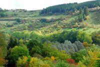 Herbststimmung bei Obermarsberg (Achim Lueckemeyer/pixelio)
