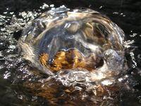 Wasser - Quell des Lebens (Bredehorn.J/pixelio)