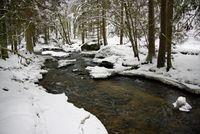 """Bergbach im Winterwald (Christian Pinzl/pixelio)"